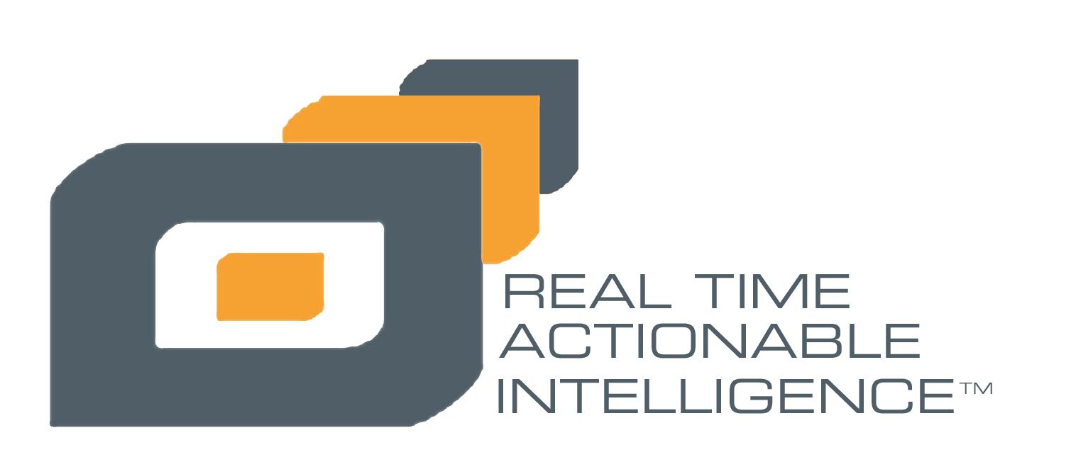 Actionable Intelligence Icon